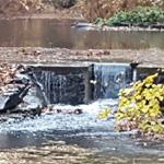 Restored Upper Pond - First Step for Gorhams Pond Restoration Completed