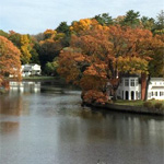 Friends of Gorham's Pond Reception and Annual Meeting 2017