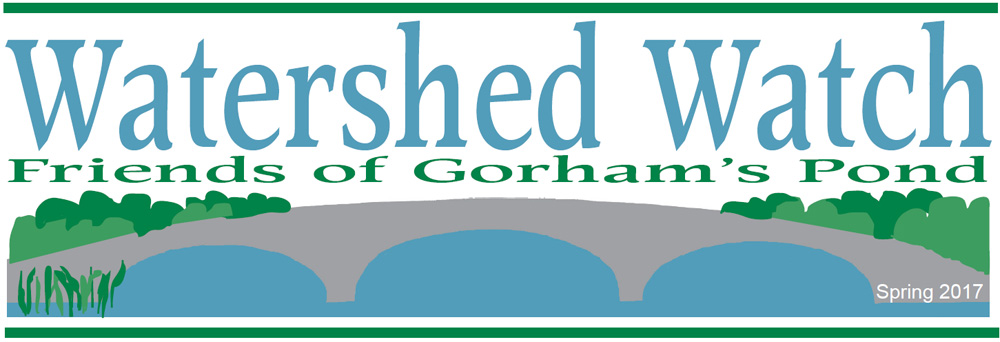 Friends of Gorham's Pond 2017 Newsletter