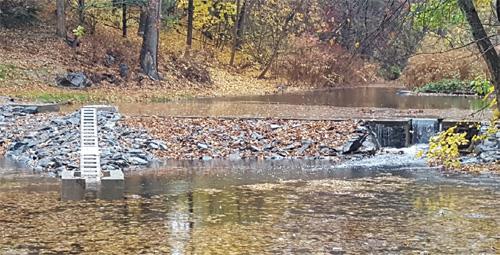 Restored Upper Pond